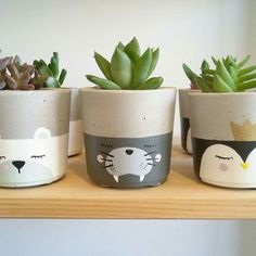 Animal Pot range pic 2